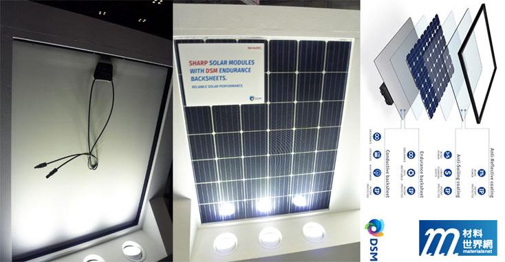 圖十三、採用DSM非氟背板的SHARP電池模組(6*7)
